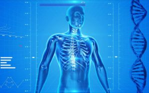 Hirudoterapia jako skuteczna metoda leczenia